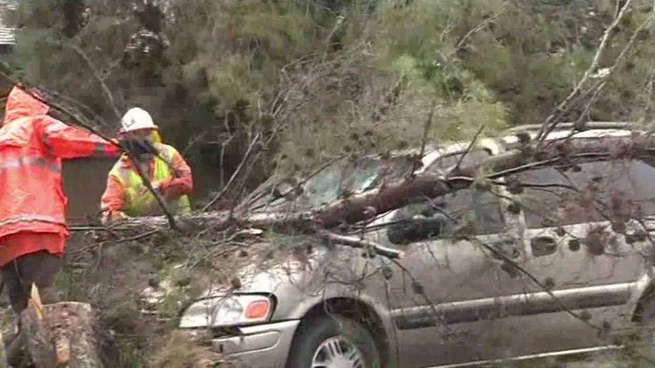 High winds toppled a tree over a car in Pacifica, Calif. on Sunday, April 24, 2016.