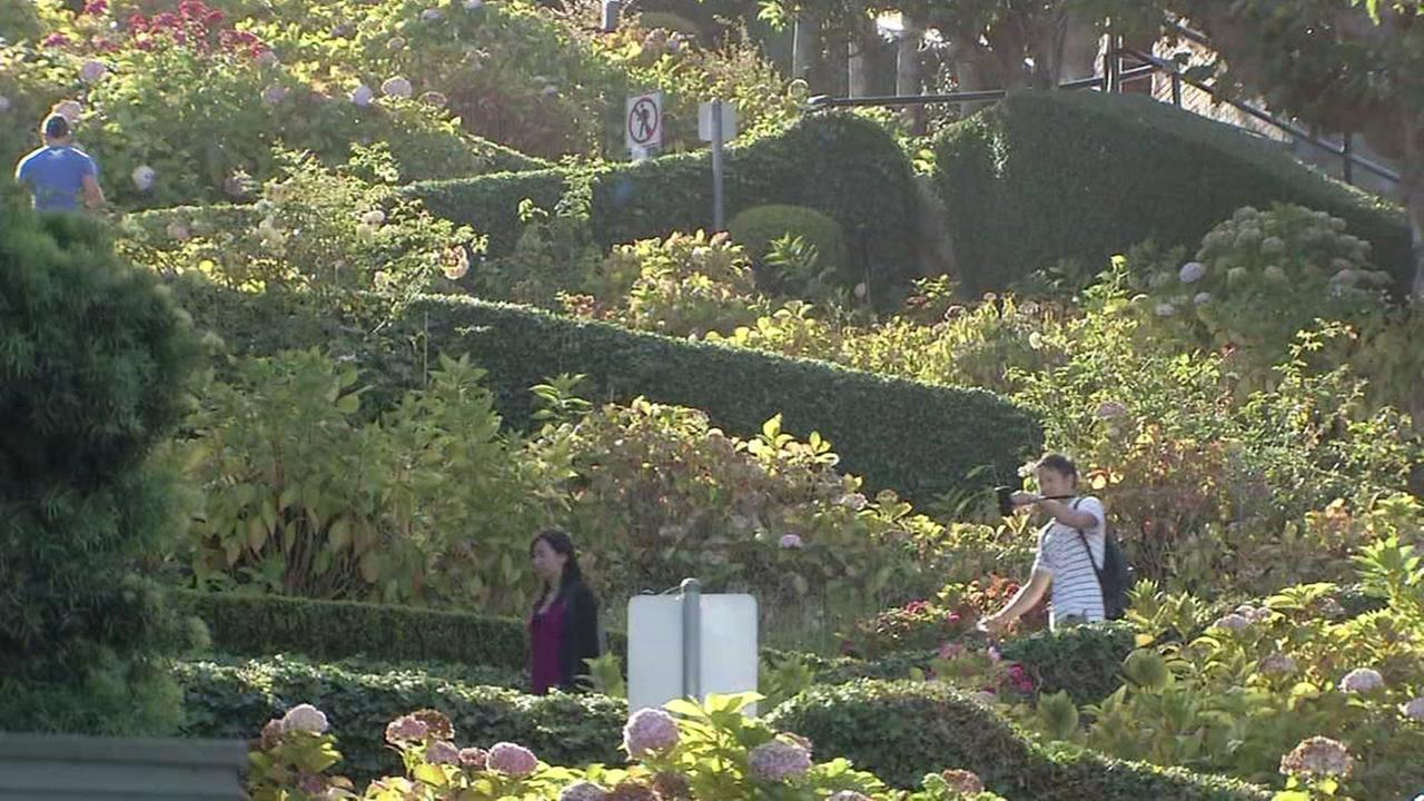 Tourists are seen walking down Lombard Street in San Francisco, Calif. in this undated image.
