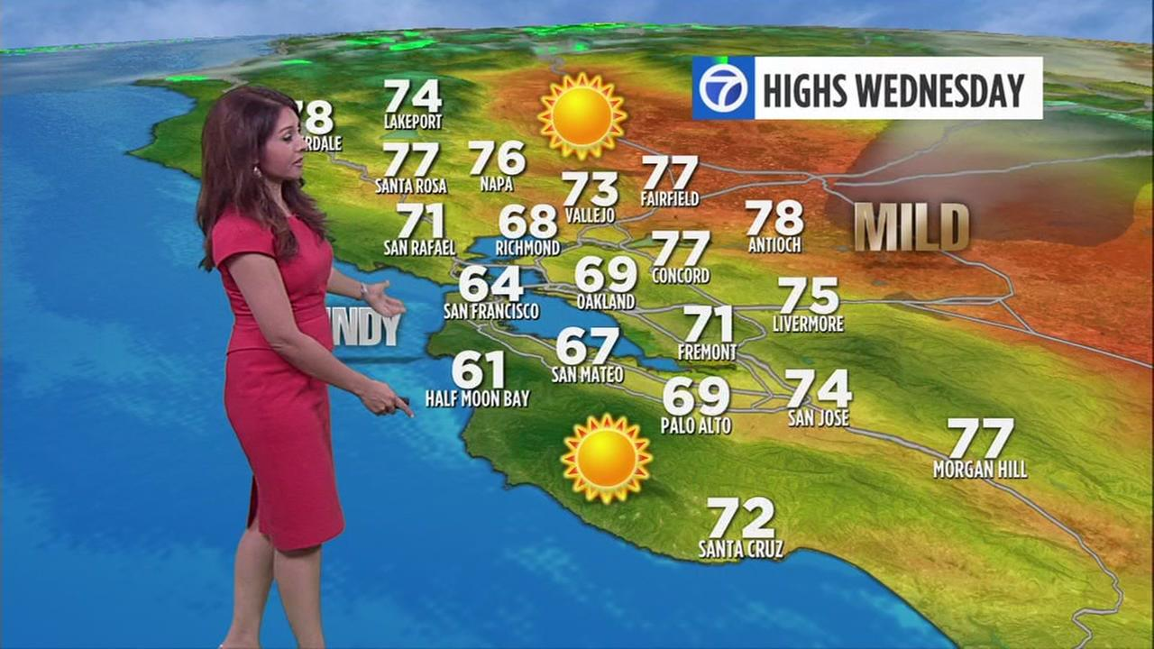 bay area meteorologist