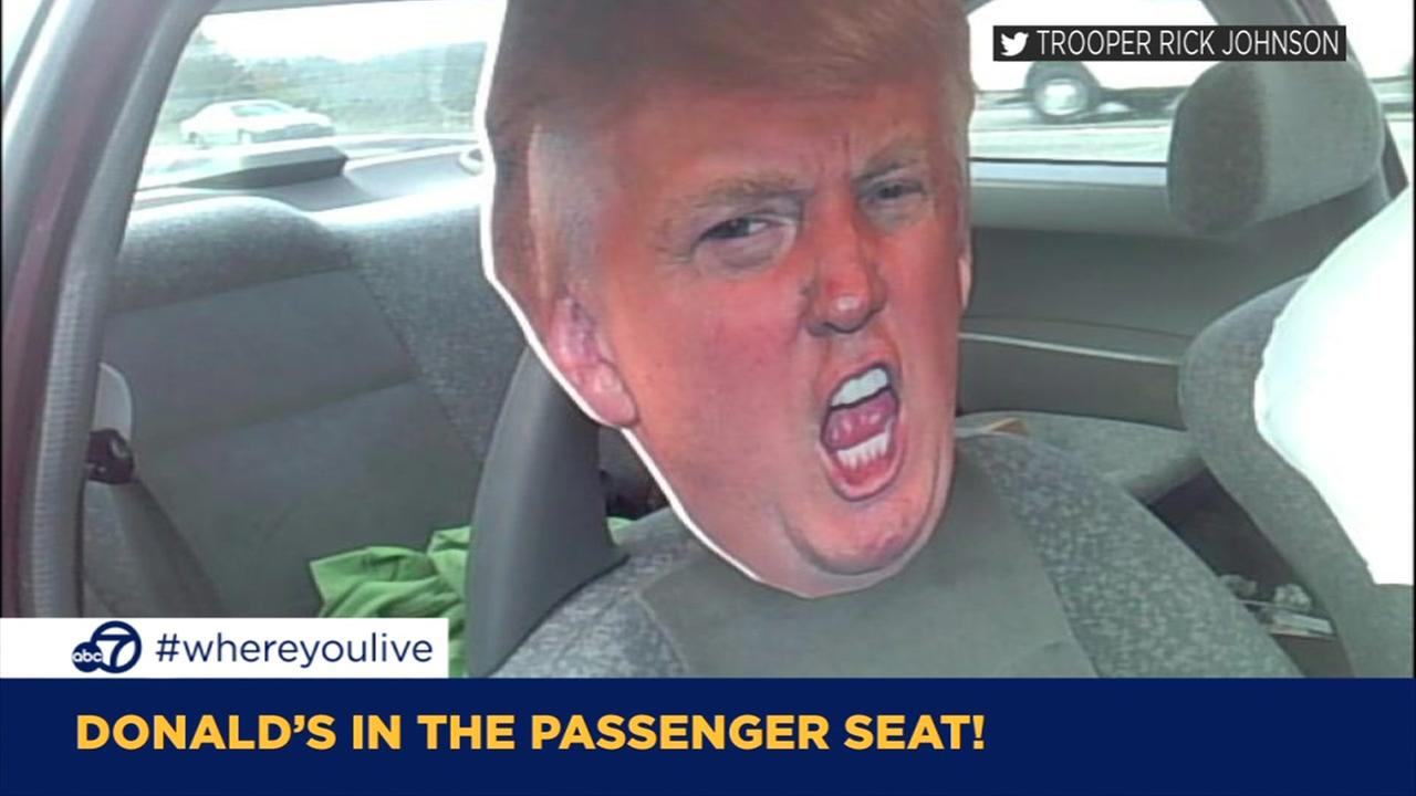 KNOW AND TELL: Motorist takes cut-out of Donald Trump for ride through HOV lane