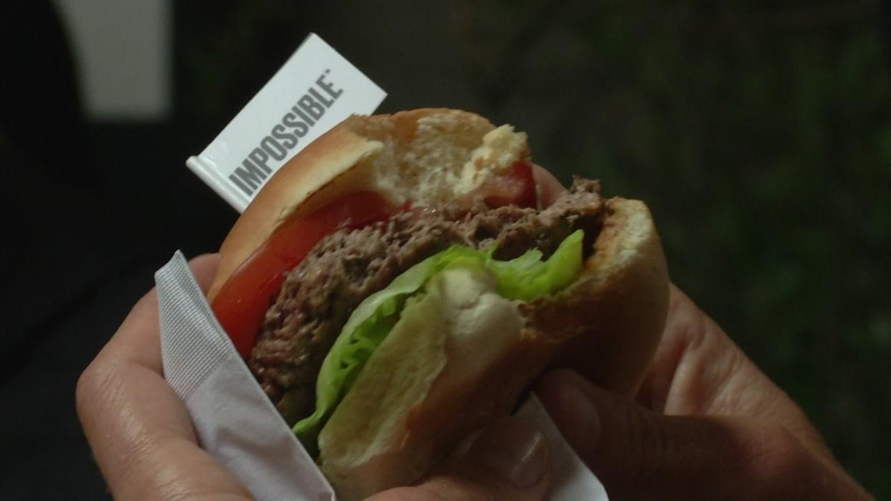 This image shows the Impossible Burger, a burger made from plants, that was created in a Silicon Valley lab.