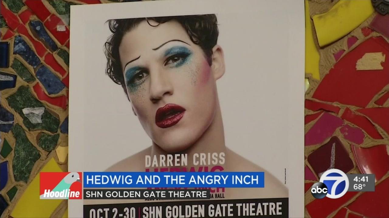 Darren Criss stars in Heidwig and the Angry Inch