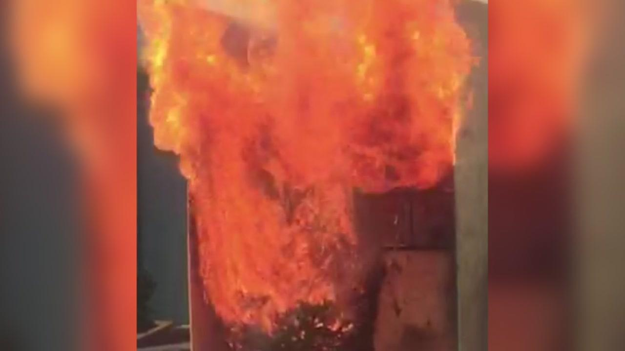 VIDEO: SFFD firefighters show how flammable Christmas trees can be