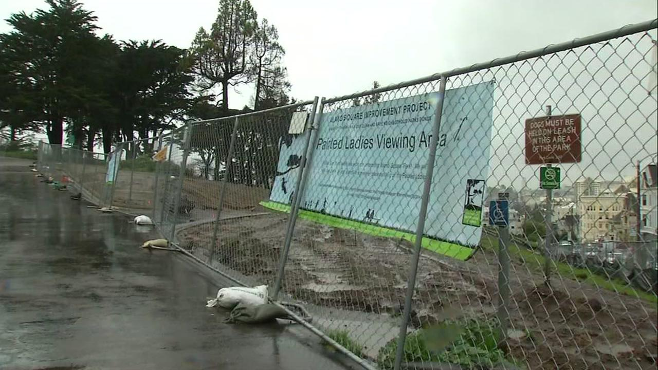 Alamo Square draws crowds of tourists despite rain