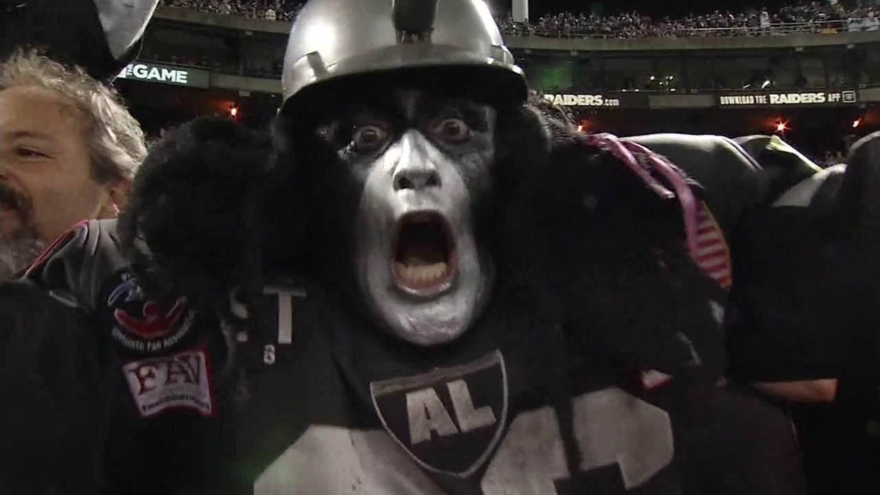 An Oakland Raider fan is seen screaming during a game in this undated image.