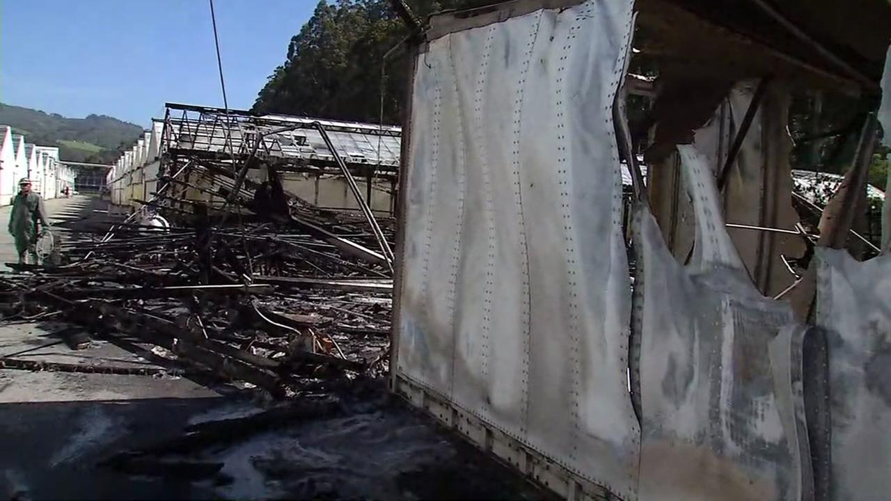 Half Moon Bay nursery fire destroys four greenhouses, cause under investigation