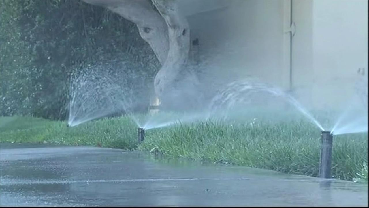 California water regulators have voted to approve fines up to $500 a day for residents who waste water on lawns, landscaping and car washing.