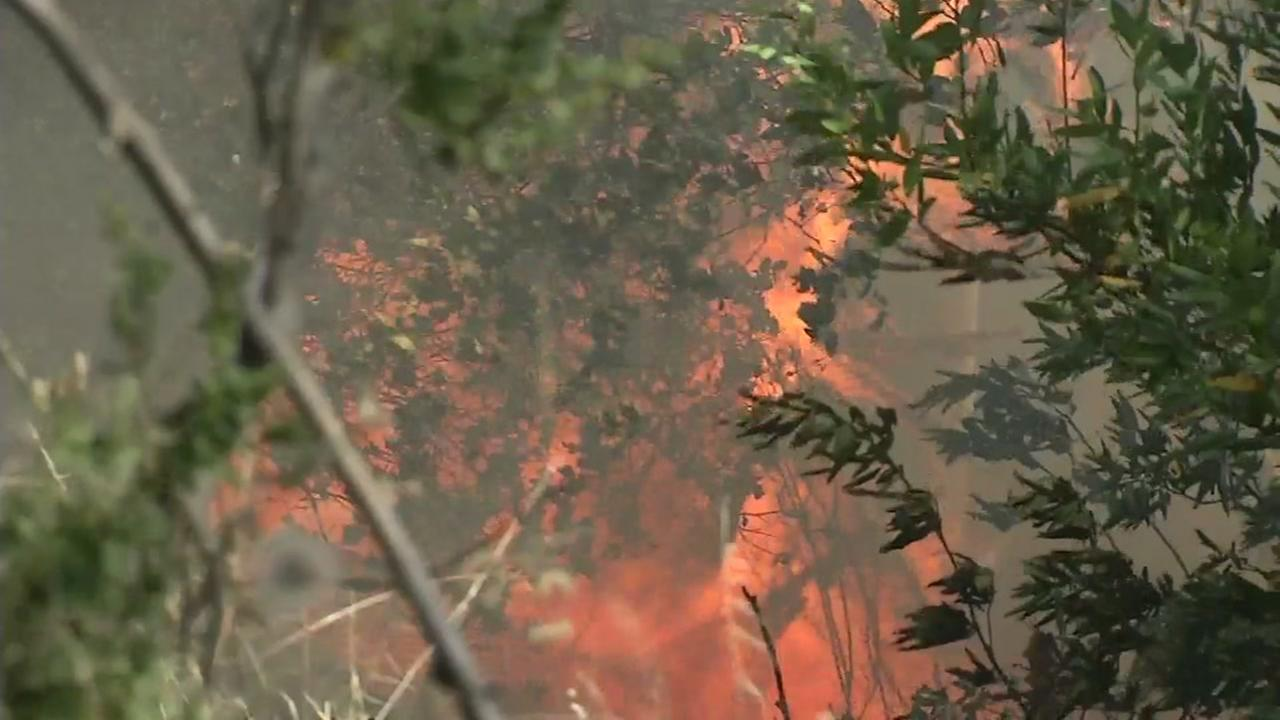 20 acre fire in East Bay Hills 50 percent contained, firefighter injured