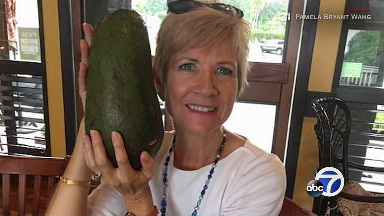 This is an undated image of a woman holding a 5-pound avocado in Hawaii.