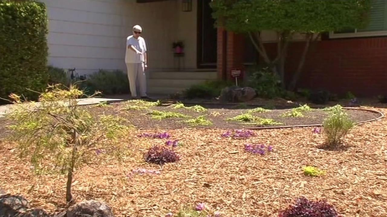 A San Ramon woman is fined by her homeowners association for taking out her lawn during the drought.