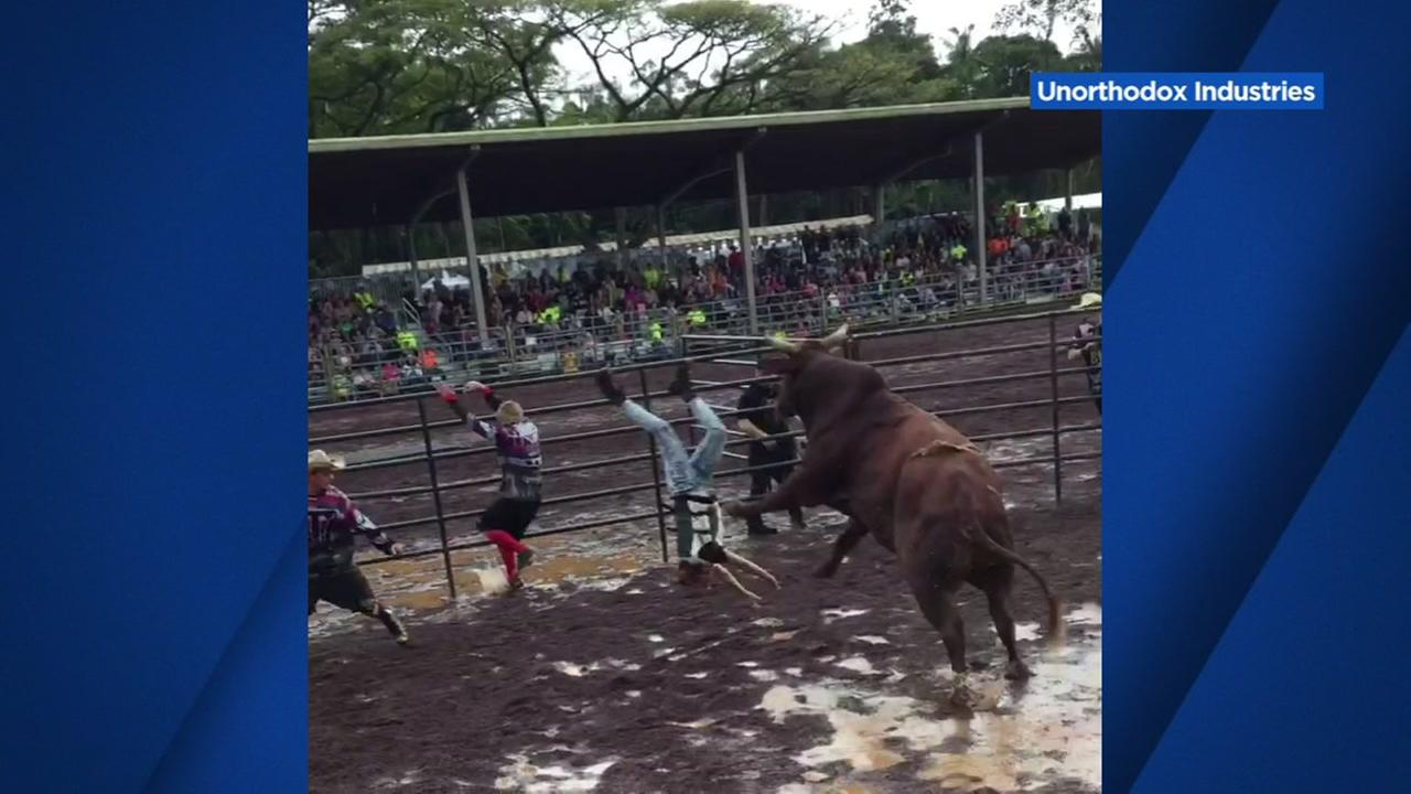 A woman is bucked off a bull in Hawaii in this undated image.
