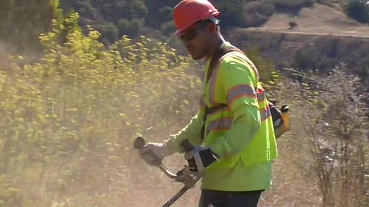 Volunteers work with the City of Oakland