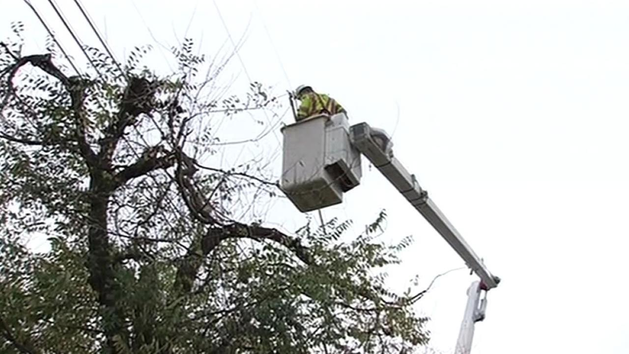 PG&E trims tree around power line before the upcoming storms