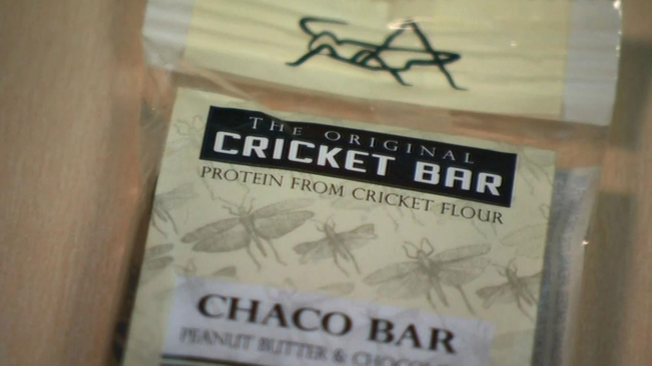 New food companies are hoping Americans can overcome the gross factor as they introduce cookies and snack bars made with cricket flour.