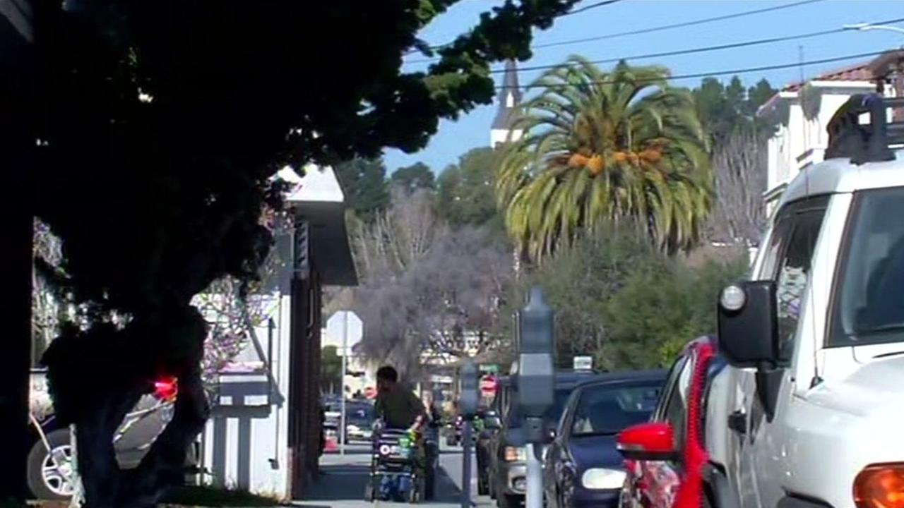 There were several reports of a puma sighting in downtown Santa Cruz on Friday morning.