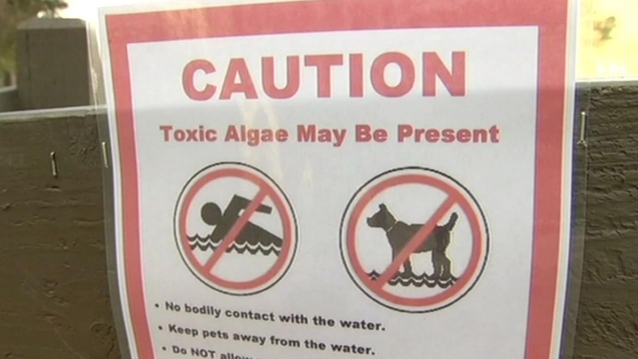 sign reads Caution, Toxic algae may be present