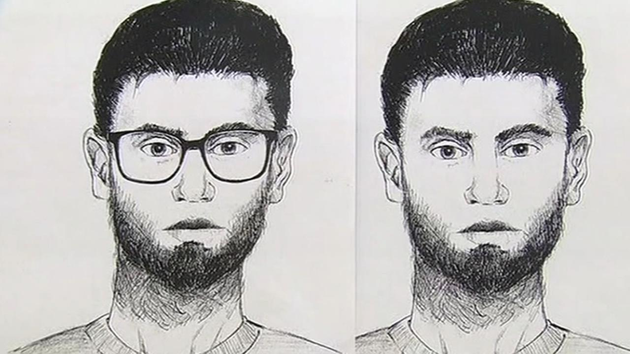 Hayward police sketches of man wanted for the attempted kidnapping of a teenage girl.
