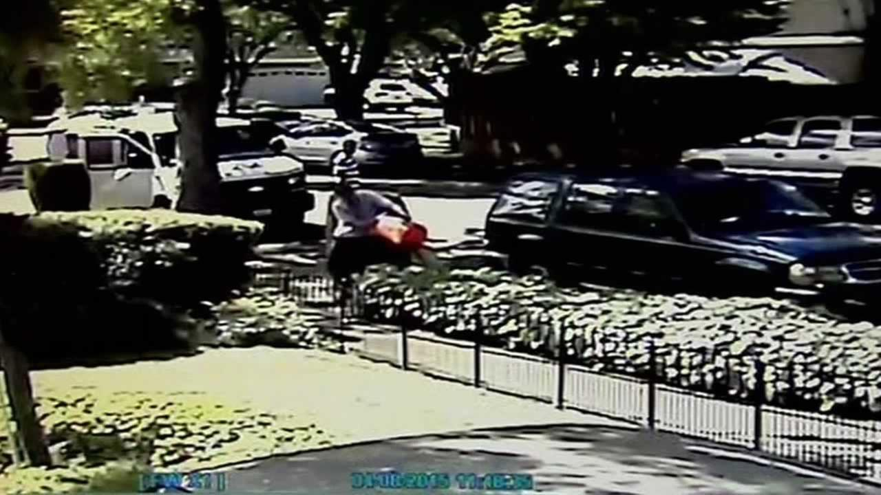 Home surveillance video shows plumbers dumping what is thought to be sewer wastewater into the bushes of a street in San Jose.