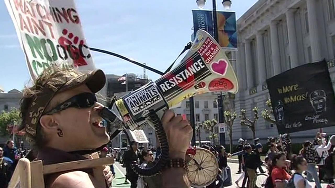 A protester demonstrating against police violence gathered outside San Francisco City Hall