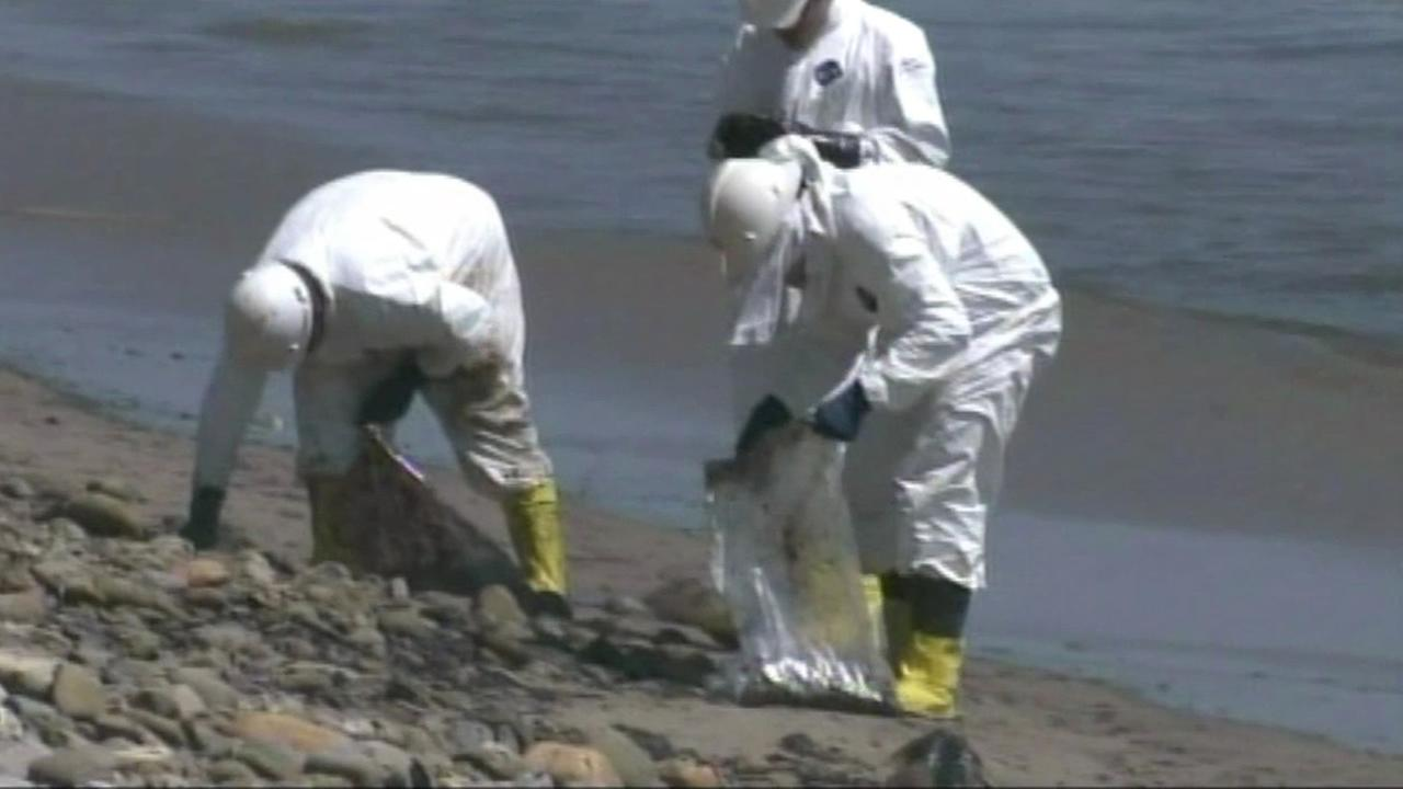 A massive cleanup effort is underway along the nine miles of Californias coastline, which is now blackened by the sludge