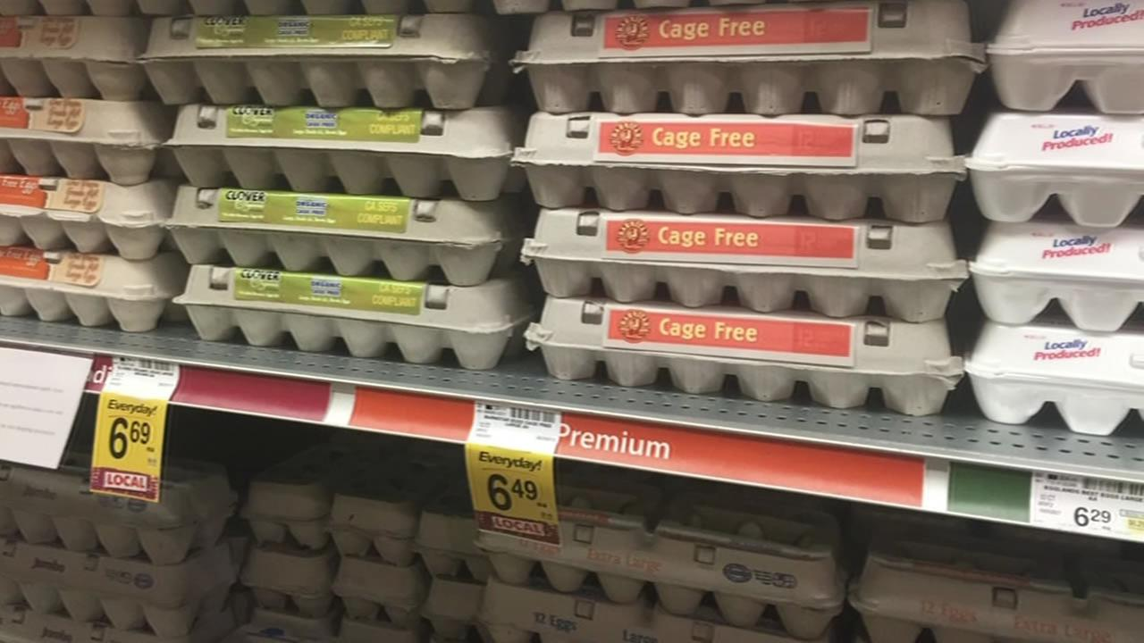 FILE - Eggs are seen at a grocery store in this undated image.