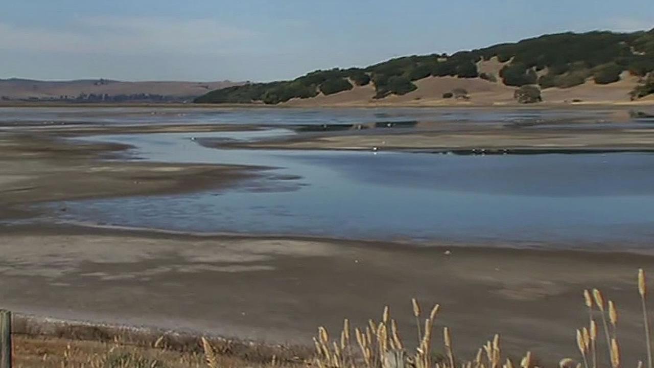 Novato wetlands