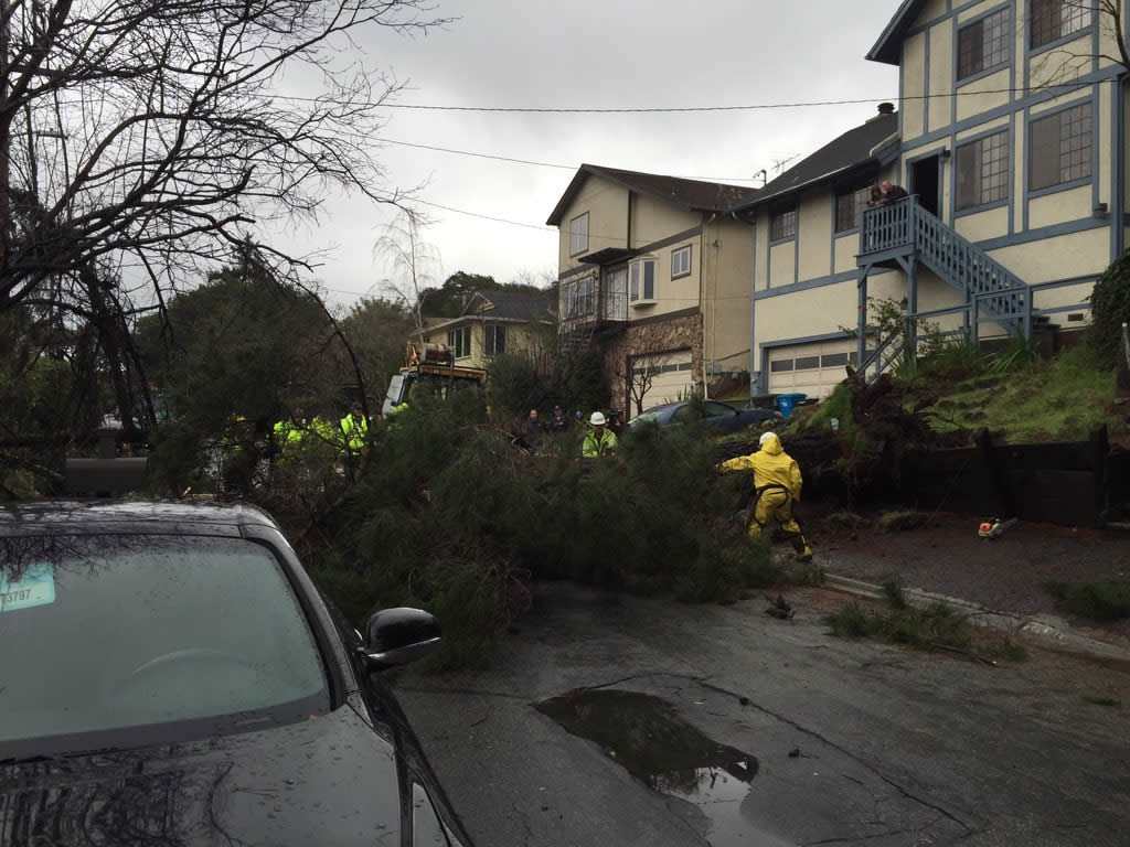 <div class='meta'><div class='origin-logo' data-origin='none'></div><span class='caption-text' data-credit='KGO-TV'>Crews work to clear trees knocked down by a powerful storm in Belmont, Calif., on Tuesday, January 19, 2016.</span></div>
