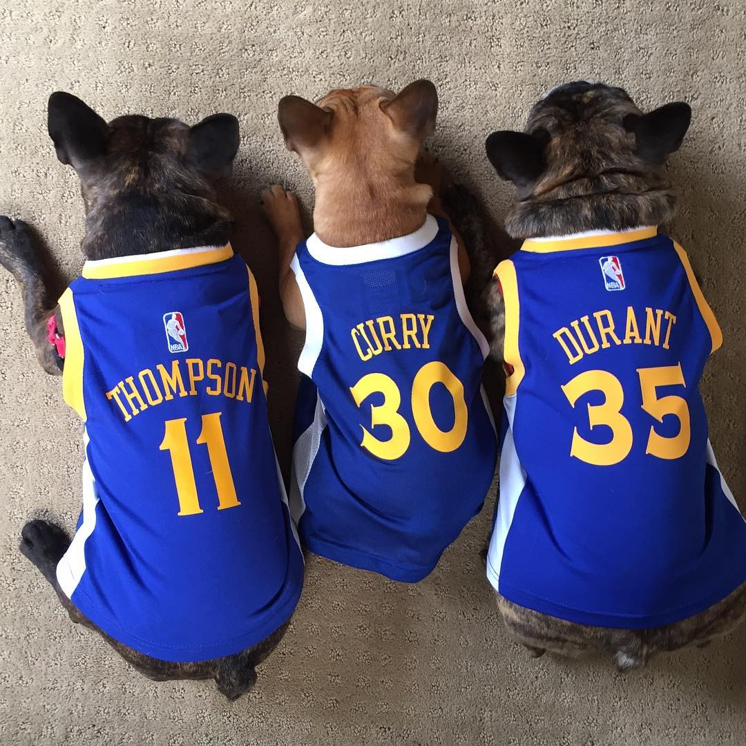 <div class='meta'><div class='origin-logo' data-origin='none'></div><span class='caption-text' data-credit='Photo submitted to KGO-TV by @bogeythefrenchie/Instagram'>Warriors fans show their spirit during the 2017-2018 season. Share your photos using #DubsOn7 and you may see them online or on TV!</span></div>
