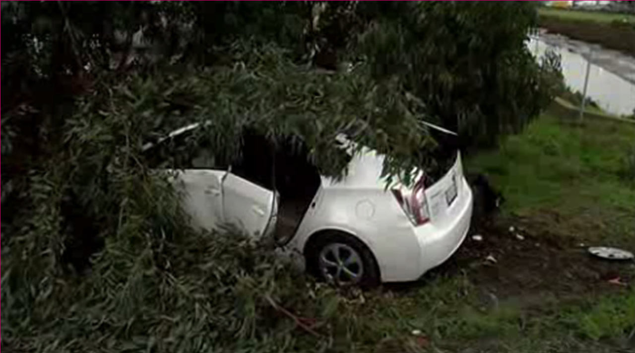 <div class='meta'><div class='origin-logo' data-origin='none'></div><span class='caption-text' data-credit='KGO-TV'>A car skid off the road on I-380 in Millbrea, Calif., on Tuesday, January 19, 2016.</span></div>