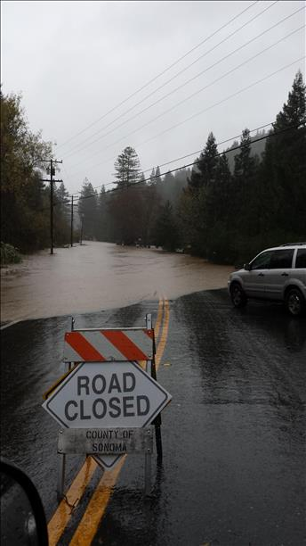 "<div class=""meta image-caption""><div class=""origin-logo origin-image ""><span></span></div><span class=""caption-text"">Armstrong Woods Road in Guerneville, Thursday, Dec. 11, 2014 (Photo submitted by Joce N. via uReport) (uReport)</span></div>"