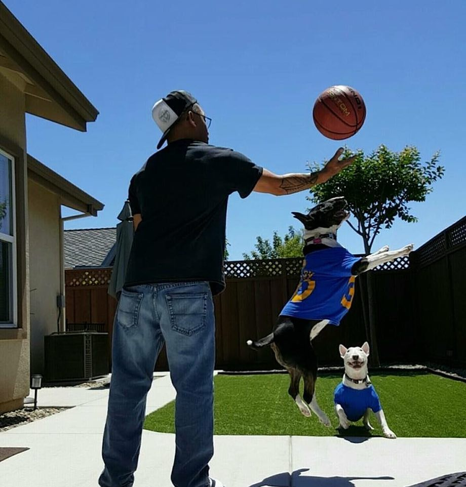 <div class='meta'><div class='origin-logo' data-origin='none'></div><span class='caption-text' data-credit='Photo submitted to KGO-TV by @jtbassmaster/Instagram'>Warriors fans show their spirit during the 2017-2018 season. Share your pictures using #DubsOn7 and you may see them online or on TV!</span></div>