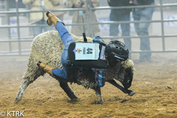 <div class='meta'><div class='origin-logo' data-origin='none'></div><span class='caption-text' data-credit='KTRK Photo/ David Mackey'>Kids tried their best to stay on their sheep the longest during the 2015 Mutton Bustin' competition in NRG Stadium</span></div>