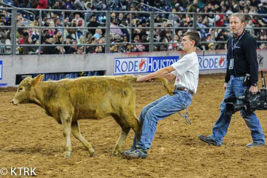 <div class='meta'><div class='origin-logo' data-origin='none'></div><span class='caption-text' data-credit='KTRK Photo/ David Mackey'>Participants tried handling cattle at the Houston Rode Calf Scramble competition in NRG Stadium</span></div>