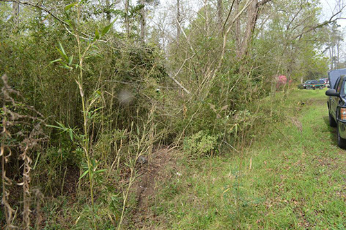 <div class='meta'><div class='origin-logo' data-origin='none'></div><span class='caption-text' data-credit='PolkCountyToday.com'>The suspect left the pavement in a pickup and crashed through underbrush, jumped a creek and landed on the other side between three trees.</span></div>