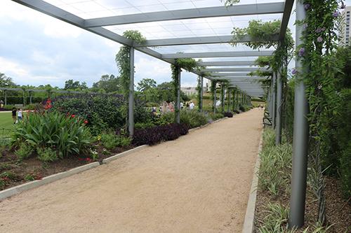 <div class='meta'><div class='origin-logo' data-origin='KTRK'></div><span class='caption-text' data-credit='Danny Clemens'>The McGovern Centennial Gardens are home to a variety of plant life.</span></div>