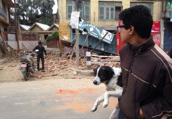 <div class='meta'><div class='origin-logo' data-origin='none'></div><span class='caption-text' data-credit='AP Photo/ Niranjan Shrestha'>A man carries a dog and walks past damage caused by an earthquake in Kathmandu, Nepal</span></div>