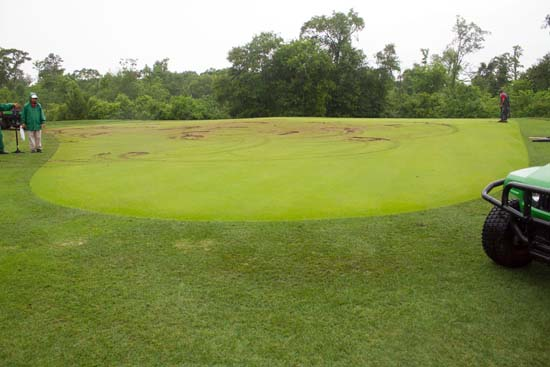 <div class='meta'><div class='origin-logo' data-origin='KTRK'></div><span class='caption-text' data-credit='Golf Club of Houston'>The Golf Club of Houston is asking for help finding two ATV riders they say vandalized the 14th green of Shell Houston Open Course.</span></div>