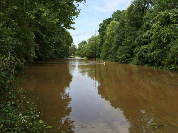 <div class='meta'><div class='origin-logo' data-origin='none'></div><span class='caption-text' data-credit='Steve Campion/Photo'>Walnut Creek is overflowing in Montgomery County, this road impassable right now, May 27, 2015.</span></div>