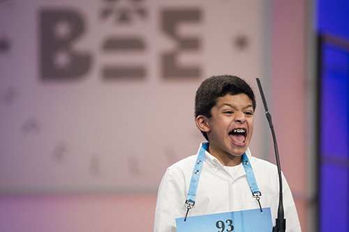 """<div class=""""meta image-caption""""><div class=""""origin-logo origin-image ap""""><span>AP</span></div><span class=""""caption-text"""">Arin Bhandari, 12 of West Haven, Conn. correctly spells his word during the 90th Scripps National Spelling Bee in Oxon Hill, Md., Wednesday, May 31, 2017. (AP Photo/Cliff Owen)</span></div>"""