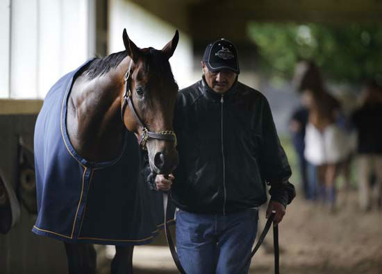 "<div class=""meta image-caption""><div class=""origin-logo origin-image none""><span>none</span></div><span class=""caption-text"">American Pharoah is led down shed row by hot walker Juan Ramirez after a workout at Belmont Park (AP Photo/ Julie Jacobson)</span></div>"