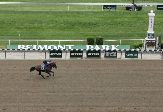 "<div class=""meta image-caption""><div class=""origin-logo origin-image none""><span>none</span></div><span class=""caption-text"">Kentucky Derby and Preakness Stakes winner American Pharoah, with exercise rider Jorge Alvarez up, gallops around the track (AP Photo/ Julie Jacobson)</span></div>"