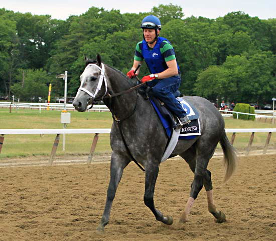 "<div class=""meta image-caption""><div class=""origin-logo origin-image none""><span>none</span></div><span class=""caption-text"">Exercise rider Lorenzo Moralez rides Belmont Stakes entrant Frosted back to the barn after a morning gallop at Belmont Park  (AP Photo/ Garry Jones)</span></div>"
