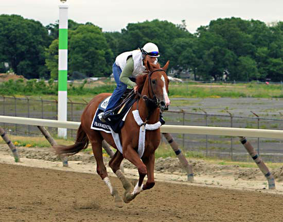 "<div class=""meta image-caption""><div class=""origin-logo origin-image none""><span>none</span></div><span class=""caption-text"">Belmont Stakes entrant Frammento, ridden by exercise rider Heather Stark, gallops on the training track at Belmont Park (AP Photo/ Garry Jones)</span></div>"