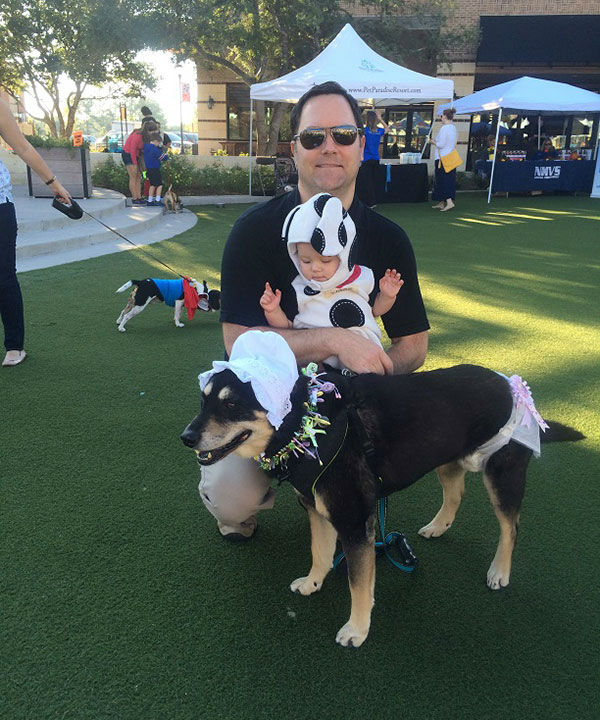 <div class='meta'><div class='origin-logo' data-origin='none'></div><span class='caption-text' data-credit='KTRK/Casey Curry'>ABC-13 Meteorologist Casey Curry's dog Nanook with the family during Halloween</span></div>