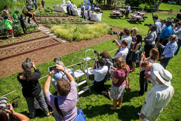 "<div class=""meta image-caption""><div class=""origin-logo origin-image ap""><span>AP</span></div><span class=""caption-text"">First lady Michelle Obama harvests the White House Kitchen Garden (AP Photo/Andrew Harnik)</span></div>"