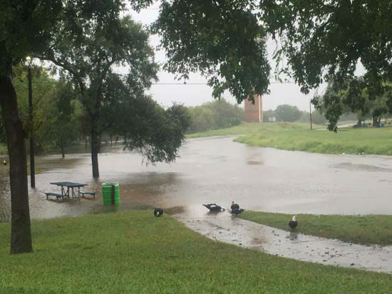 <div class='meta'><div class='origin-logo' data-origin='none'></div><span class='caption-text' data-credit='KTRK Photo/ ABC-13 viewer-submitted photo'>Flooding seen in the Pasadena area</span></div>