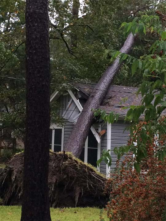 <div class='meta'><div class='origin-logo' data-origin='none'></div><span class='caption-text' data-credit='Ashley Yell'>A tree fell on a home in Dickinson during heavy rains on Saturday, October 24, 2015.</span></div>