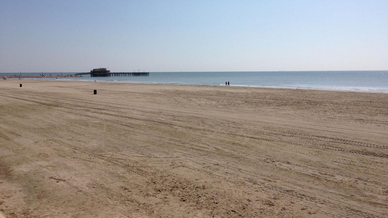 Galveston Island - Beach and Pier Image