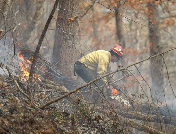 <div class='meta'><div class='origin-logo' data-origin='AP'></div><span class='caption-text' data-credit='AP Photo/John Bazemore'>A firefighter battles a wildfire Tuesday, Nov. 15, 2016, in Clayton, Ga.</span></div>