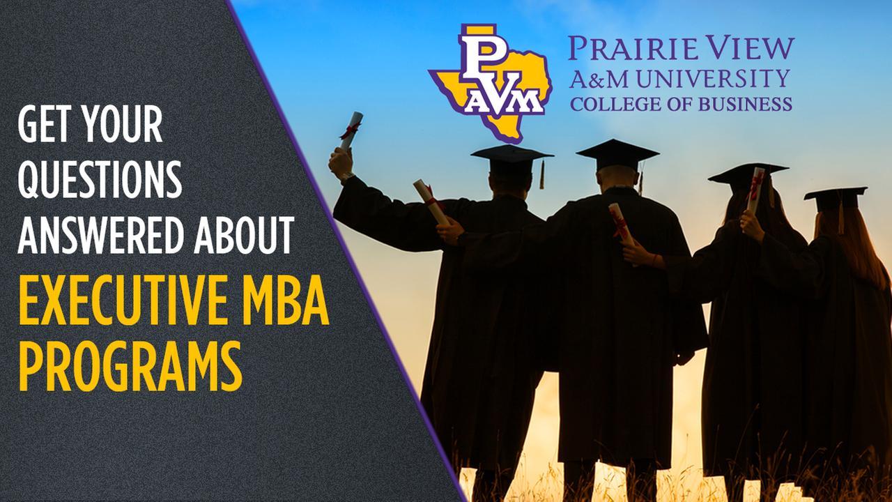 Live chat: Choosing an Executive MBA program